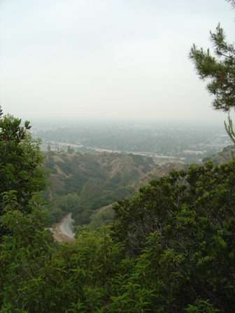 hollywood hills, griffith park, los angeles